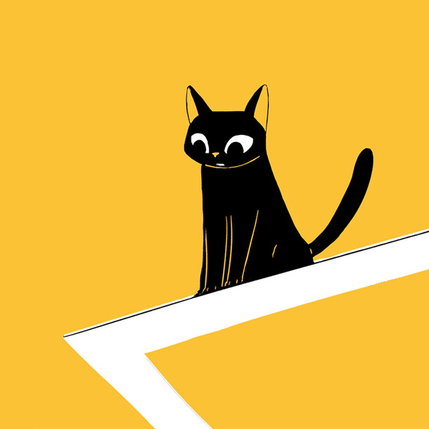 Cat & balance
