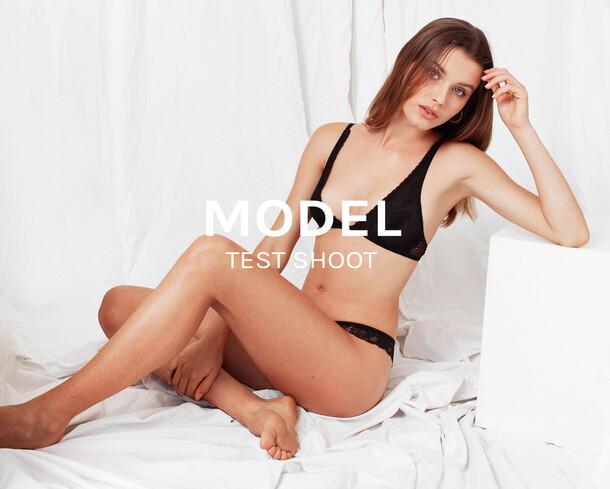 Premium model