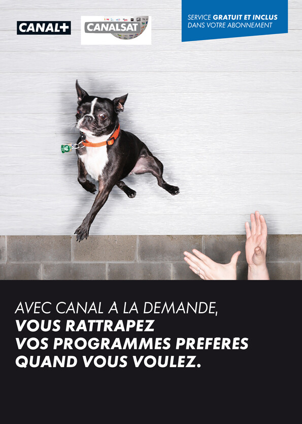 Canal + // catchup