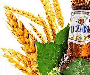 Lezajsk Beer