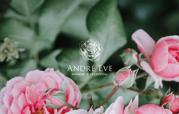 André Eve
