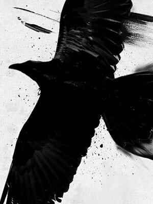 Noval Black - Trailer