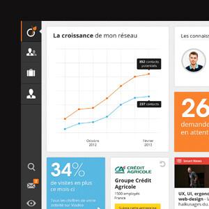 Viadeo iPad app