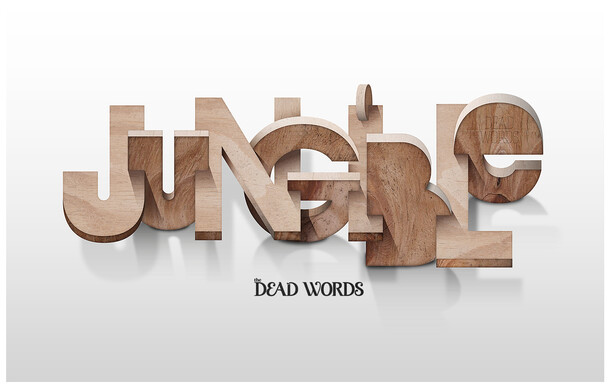 JUNGIBLE - Dead Word Project