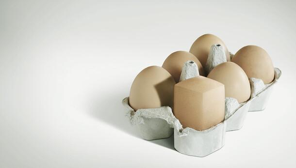 Eggs/Sardines