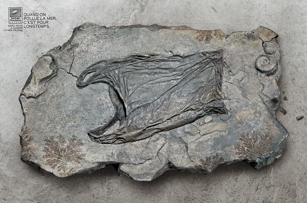 Surfrider / Fossil