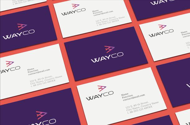 Wayco / Ecom